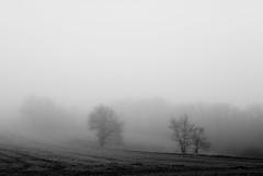 (Mathieu Calvet) Tags: blackandwhite france fog 35mm landscape noiretblanc pentax lot paysage f8 brume aficionados midipyrnes k10d pentaxk10d justpentax pentaxart pentaxsmcfa35mmf2 smcpentax35mmfa