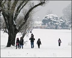 Bellfields Green (1) (strussler) Tags: england people snow kids canon children fun parents play surrey powershot guildford g9 bellfieldsgreen