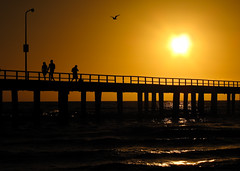 Beach Life! (Greg Cee) Tags: beach australia melbourne victoria seaford hotsummer anawesomeshot canong10