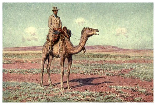 021-Haciendo un reconocimiento para el ferrocarril transcontinental en Australia Centra-Australia (1910)-Percy F. Spencel