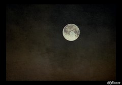 """Dillo alla Luna"" - Vasco Rossi - (Gorgo07[ tutto un equilibrio sopra la Follia]) Tags: moon texture nature lumix photo loneliness foto darkness luna pienza notte nignt gorgo elaborazione postproduzione soulscapes innamoramento stealingshadows awardtree whitesoul miasbest redmatrix daarklands magicunicornverybest trolledproud"