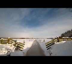 Disproportionate symmetry (Danil) Tags: christmas winter sky white snow holland ice netherlands dutch landscape frost december daniel tag sneeuw symmetry letitsnow 2009 friesland landschap hek sloot d300 bakkeveen waskemeer wijnjewoude disproportionatesymmetry