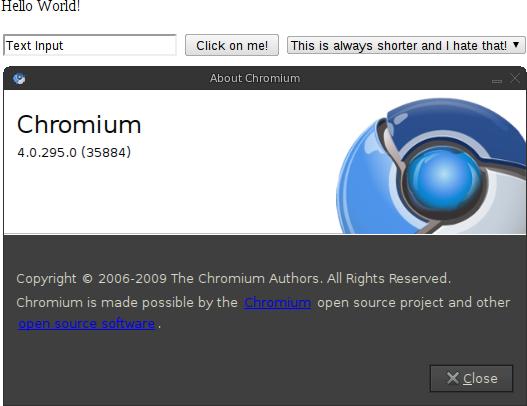chromium-4.0.295.0