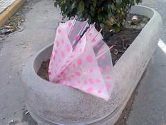paraguas 038 (Sap__) Tags: sad umbrellas paraguas tristes