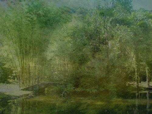 Recorridos a los Parques Naturales en Navarra
