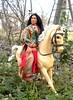 kocoum barbie pocahontas doll (plumaluna07@sbcglobal.net) Tags: cats shirt war doll native siamese joe american indians figures gi sioux lakota