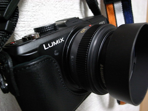20100124_LUMIX_GF-1
