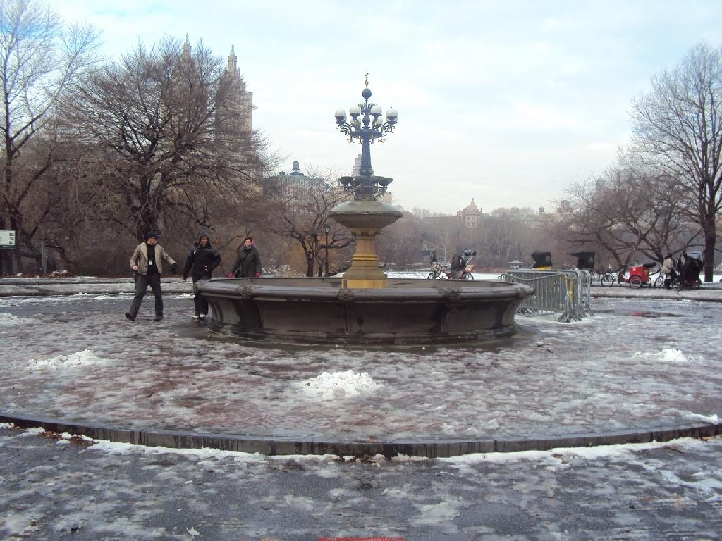 2010-01-01_031