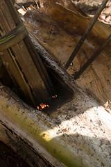 IMG_1767 (same_photography) Tags: travel portrait people blackandwhite bw nature canon photography monkey photo dance village image culture lifestyle tribal ancestor ghana jungle abroad westafrica editorial ritual goldcoast palmwine tafiatome obruni bebini sameubank liatiwote palmgin