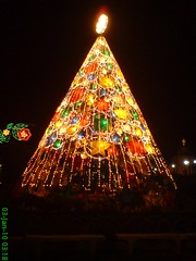 Electric Tree (leszee) Tags: christmas tree electric stars lights star philippines christmastree launion parol christmasstar electrictree sanfernandocityplaza