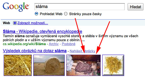 straw google czech dead people