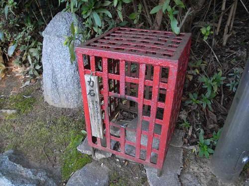 飛鳥坐神社(おんだ祭)@明日香村-26