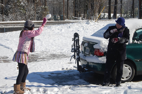2010 snowball