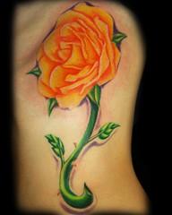 rose side