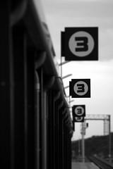 Third Platform (Siraj al Din) Tags: sunset white black scale station canon eos rebel tramonto gray platform railway third scala stazione bianco nero binario terza terzo piattaforma 400d grigi