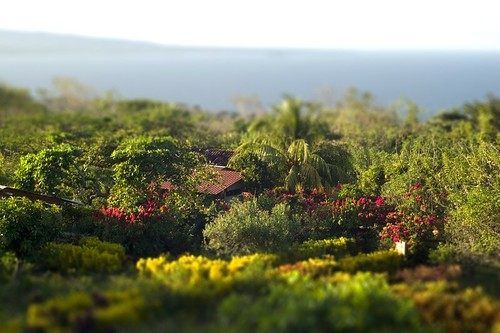 tilt shift - Ometepe, Nicaragua