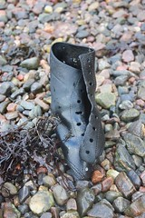 (Highland Fairy) Tags: seaweed hearts treasure stones driftwood beachcombing coastwalk