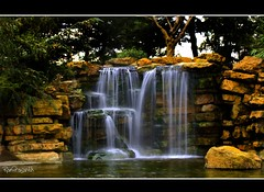 WATERFALL (FLASH MEDIA CREATIONS) Tags: water waterfall slowshutter garden park universityofnottingham lakeside fall pond ram ramprasanth nikon d40 sigma 200mm nottingham uk england theunforgettablepictures nottinghamuniversity trentbuilding universityboulevard beestonroad ng7 lake univeristypark highfieldpark highfieldparknottingham highfieldspark nature wildlife naturepark coimbatore india nottinghamshire eastmidlands httpwwwflickrivercomphotostagsnatureparkinteresting interesting 100commentgroup prasanth amazing pictures pics wild insects birds animals industrialphotography industrialphotographyincoimbatore ramprasanthphotography flashmediacreations professionalphotography