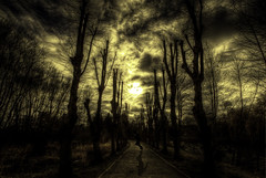 He's following me.. (Danny Beattie) Tags: shadow yellow clouds photoshop paul sony spooky hdr a300 1118mm