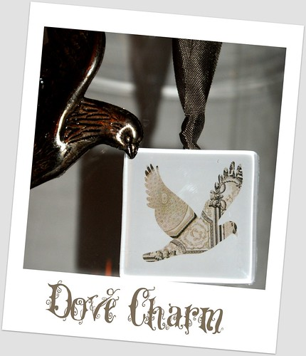 Dove Charm
