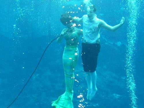 weeki wachee mermaid.
