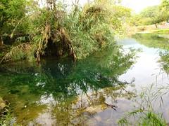 IMG_2749 (Ezniter) Tags: waterfall cascada huasteca sanluispotosi tamul tamasopo