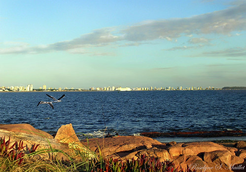 "Mirando hacia Punta del Este | <a href=""http://www.flickr.com/photos/59207482@N07/4450292667"">View at Flickr</a>"