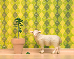 Sheepish (Wild Life Prints) Tags: wallpaper plant green wool toys miniature funny pattern sheep houseplant diorama tabletop barnyard schleich diamondpattern