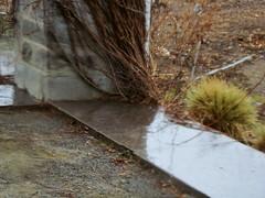 Lumire (Give compassion to yourself) Tags: snow reflection nature garden spring vines montral stones lumire pierre couleurs surface qubec vignes printemps brightness pergola brillance luminosit chaudes 20100321botaniquejardinmontral