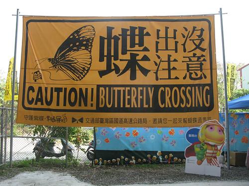 蝶出沒注意