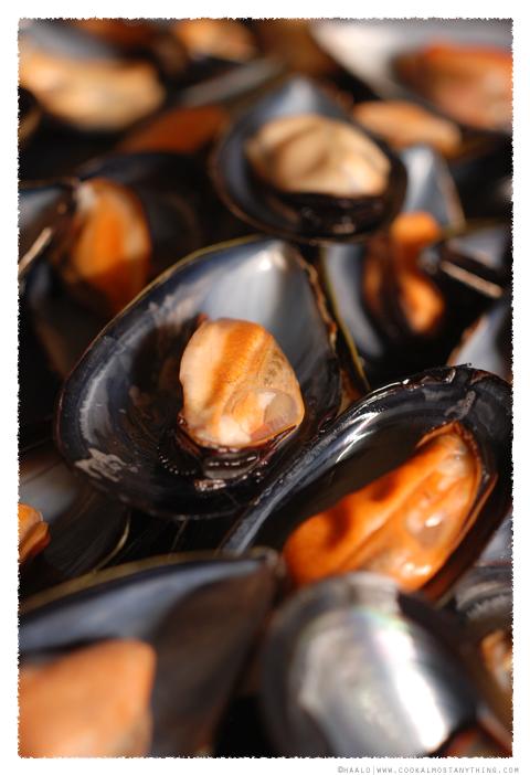 mussels© by Haalo