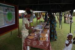 Cassava recipes on display during IITA Open Day 09 (IITA Image Library) Tags: entertainment recipes cassava openday foodproducts manihotesculenta iitaibadan