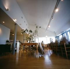 Lunch Time (chizuru-bis) Tags: film pinhole nara zero2000