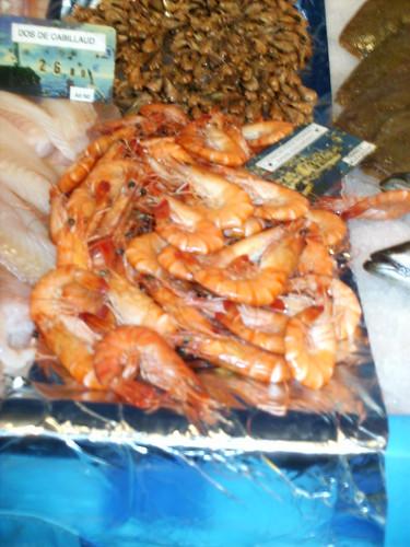 More prawns!