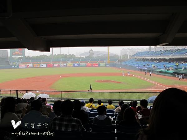 新莊看棒球1-2010.04.18