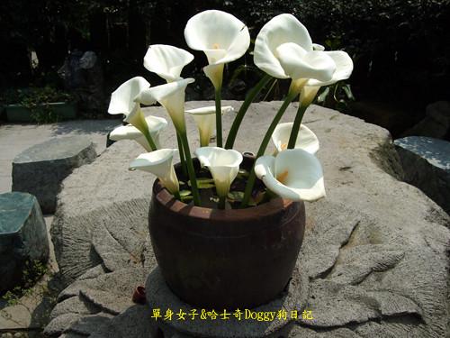 2010-04-02-183