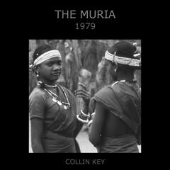 The Muria (Collin Key) Tags: india youth jungle ind adivasi chhattisgarh muria bastar youthhouse ghotul collinkey gondtribes tribalpeopleofindia villagedormitory motiari kingdomoftheyoung verrierelwin