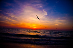 Glorious Sunrise (eyecbeauty) Tags: ocean sky beach sunrise sand personal florida sunday your shore miamibeach sobe skytheme