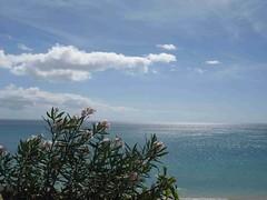 IMG_2759 (miss_verstaendnis) Tags: ocean sea sun kite beach water strand meer wasser sommer fuerteventura kitesurfing atlantic canaries sonne atlanticocean canaryisland fuerte kitesurfen sotavento wassersport sotaventobeach