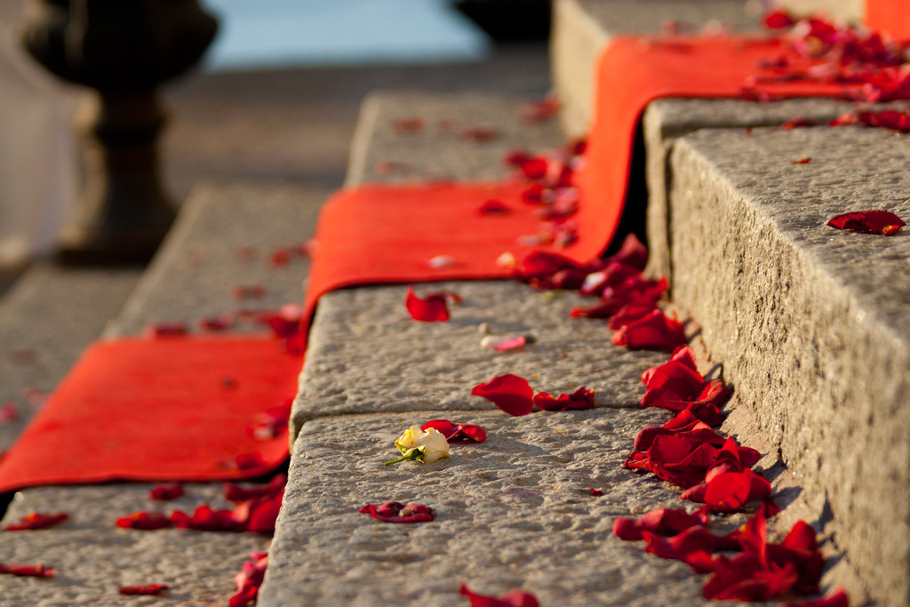 Rose petals on the steps to Sundbyholms slott.