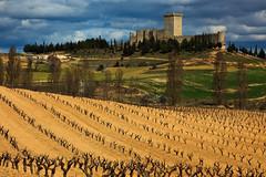 Castillo de Pearanda de Duero (trommer photography) Tags: travel castle field vineyard spain wine landmark burgos castillayleon pearandadeduero castillodepearandadeduero