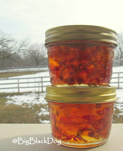Recipes for preserving hot peppers