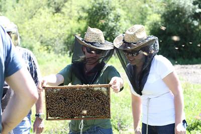 beekeeper tiana