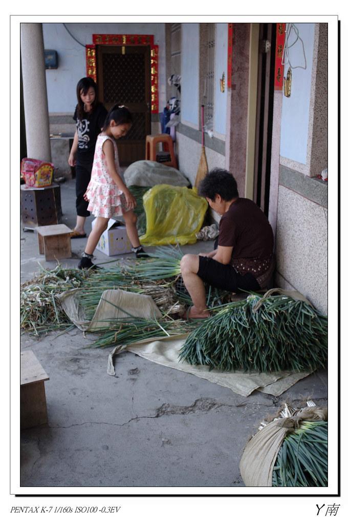 台灣最在地的精神