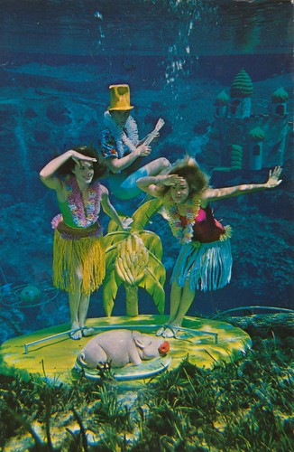 Underwater Dream Girls - Weeki Wachee, Florida