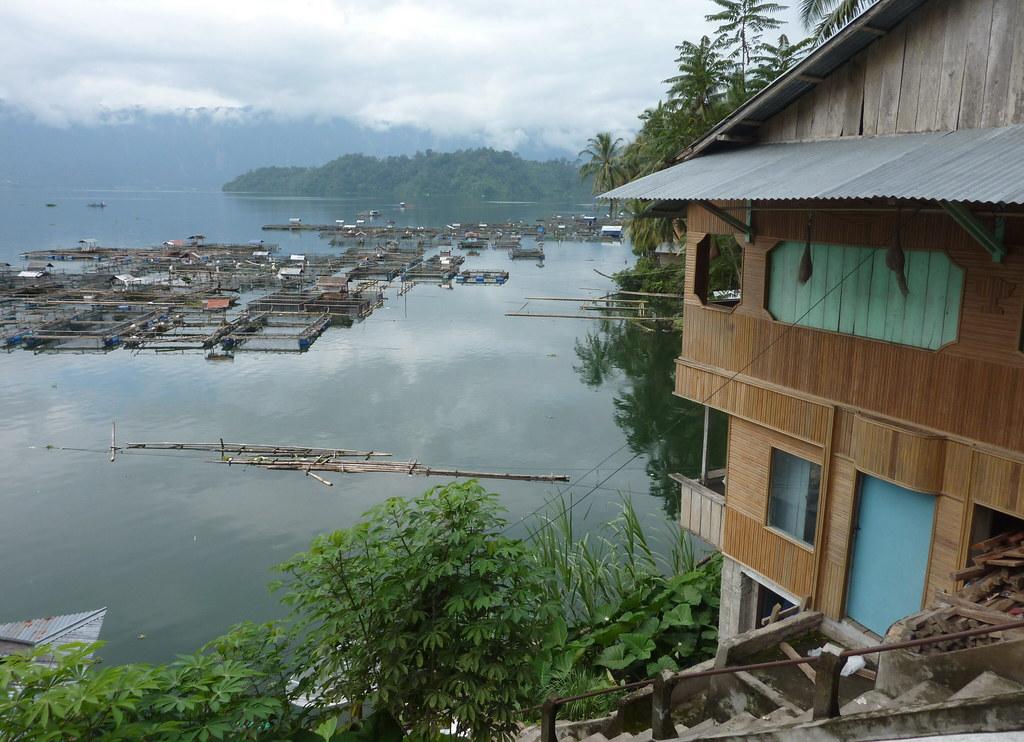 Sumatra-Lac Maninjau (108)