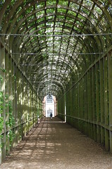 through the tunnel!!!! (grannie annie taggs) Tags: gardens path tunnel mywinners platinumheartaward goldstaraward 100commentgroup mygearandme mygearandmepremium