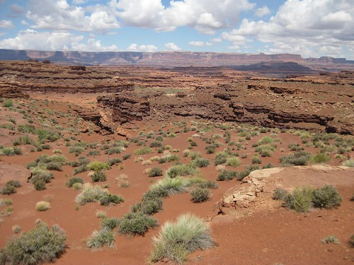 Lockhart Basin Utah_May 2010 130