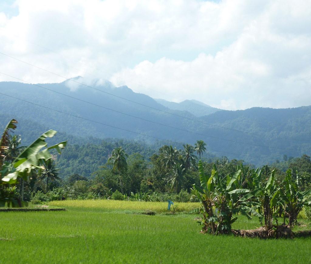 Sumatra-Padang (11)