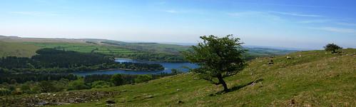 Burrator Landscape (Dartmoor)